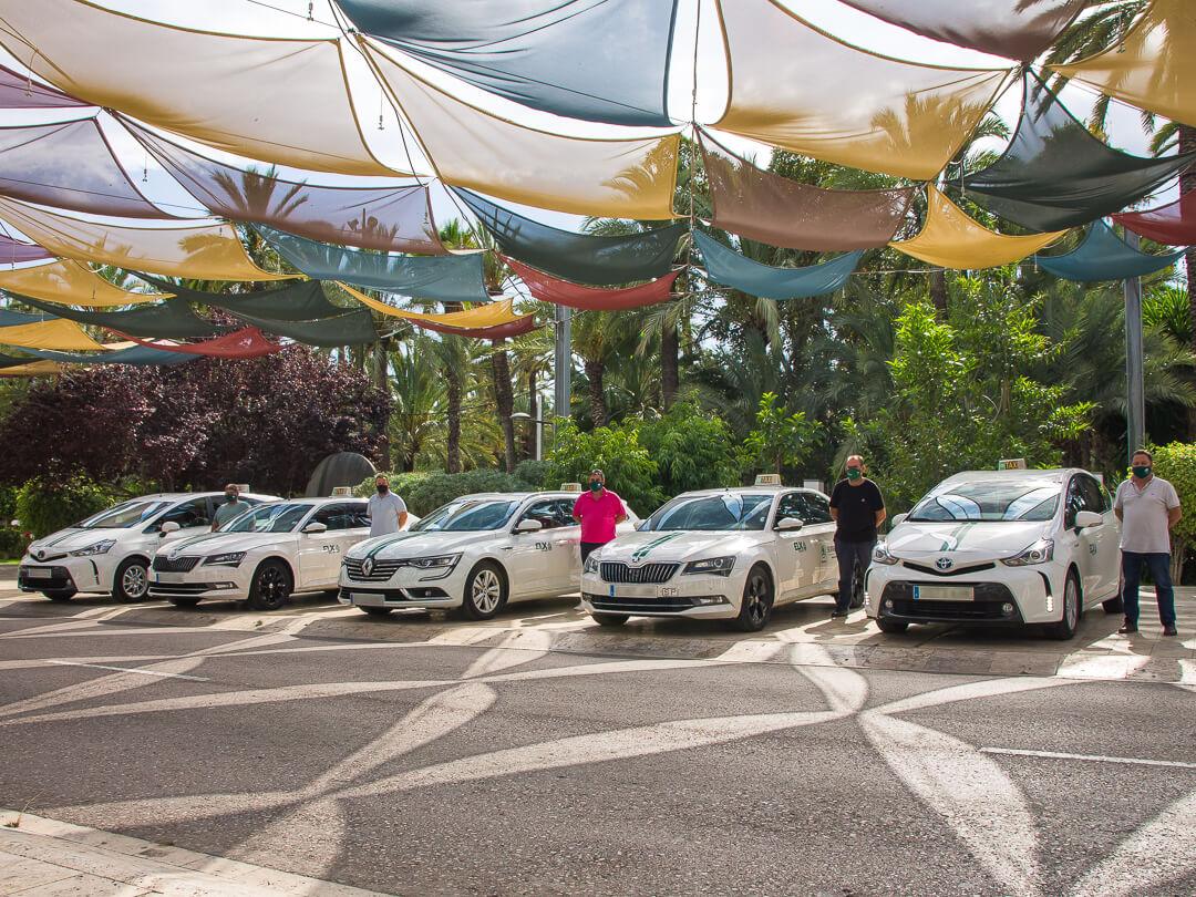taxi oficial en elche